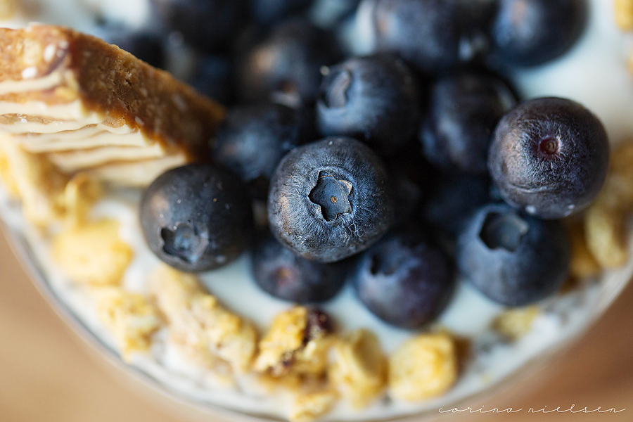 Corina Nielsen- Live Fit- Chia Seed Pudding-6