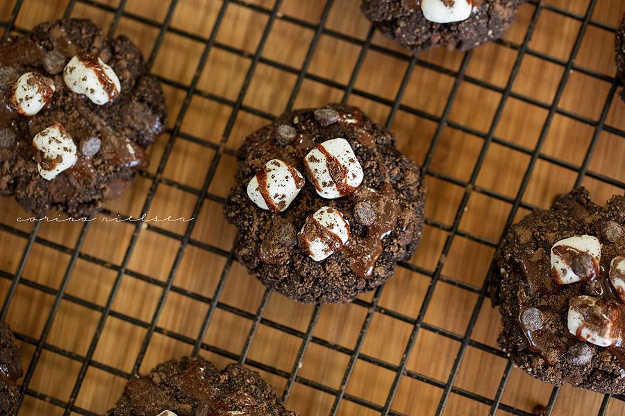 Corina Nielsen- Hot Cocoa Snickerdoodle Cookies-7