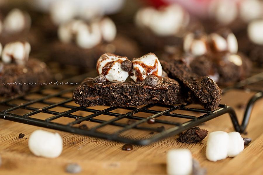 Corina Nielsen- Hot Cocoa Snickerdoodle Cookies-9