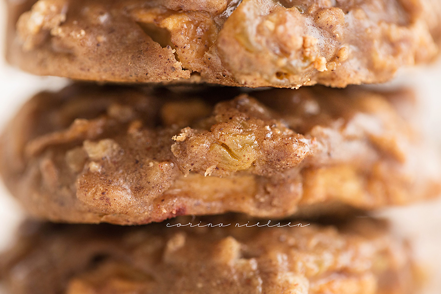 Corina Nielsen- Apple Spice Oatmeal Blondie Cookies-10