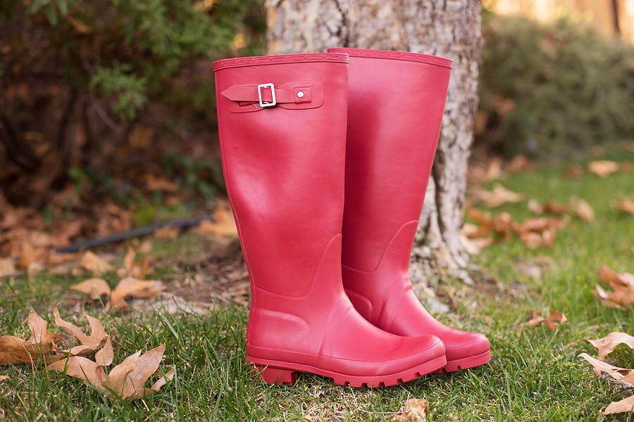 redrainboots1