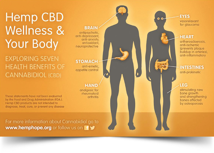 hemp-cbd-wellness-your-body